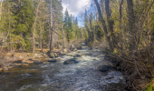 2676 So. Upper Truckee Walk to River