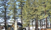 al-tahoe-historic-meadow-cabin