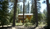 pioneer-trail-home-backing-forest