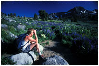 Outstanding South Lake Tahoe Real Estate Services